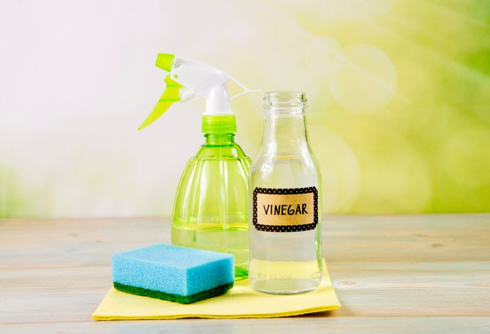 how to clean a water bottle: Using white vinegar