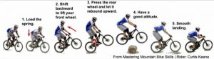 Guide line for Manual BMX