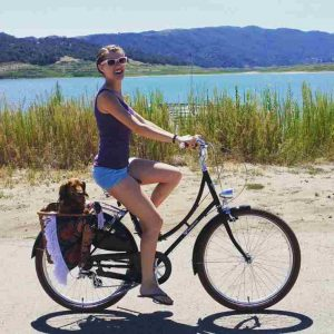 Guide to Buying the Best Comfort Bike